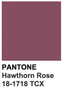 hawthorn rose